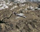 X-Plane crj11